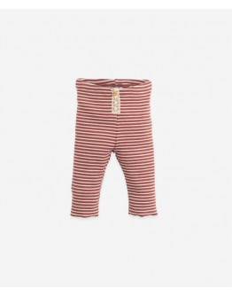 PLAY UP - Baby girl - Legging stripe with lace detail - Botany